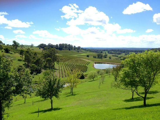 James' Hunter Valley Wine and Vineyard Tours : Hunter Valley