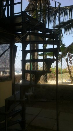 Palm Beach Resort: Tree House