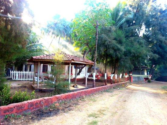Naad Beach Resort Dapoli Maharashtra Hotel Reviews Photos Rate Comparison Tripadvisor