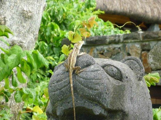 The Oberoi, Mauritius : C'est ça OBEROÏ