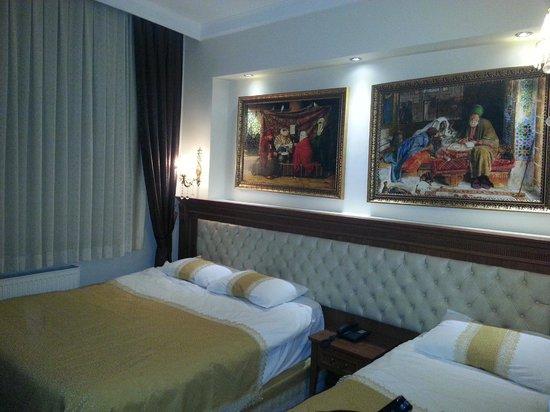 Blue Istanbul Hotel: camera