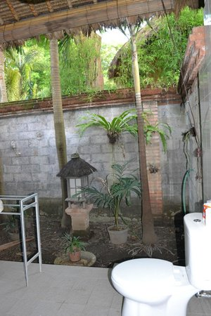 Sanur Beach Villas: view from bathroom