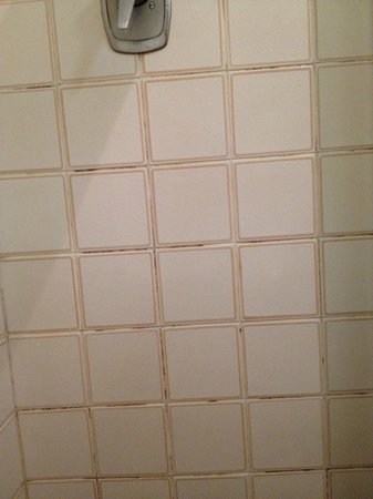 Mercure Perth: Dirty bathroom tiles