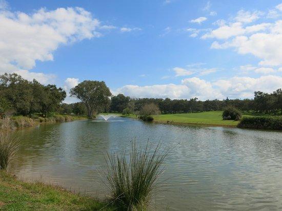 L'Amphitrite Palace: Golfplatz