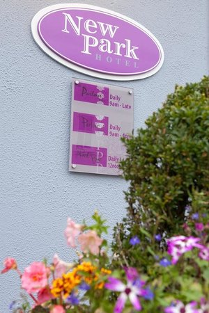 New Park Hotel Bistro Picture