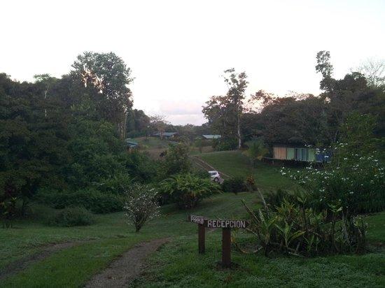 Finca Maresia: terrein met budget kamer (rechts) bungalows (achter)