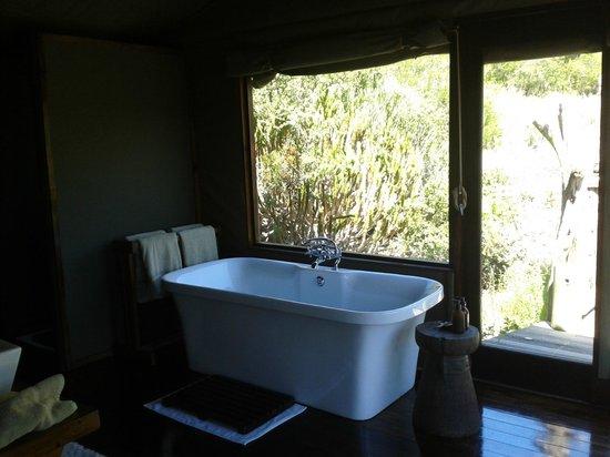 HillsNek Safaris, Amakhala Game Reserve : Salle de bain lumineuse