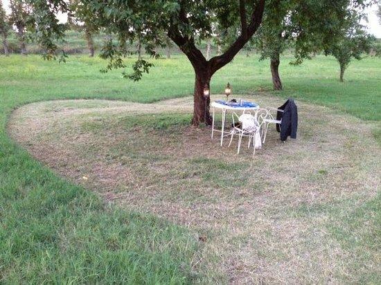 Villa Valcorba Duse Masin: parco nel retro della villa..molto intimo