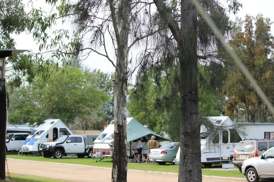 Killarney View Cabins and Caravan Park : Park Grounds