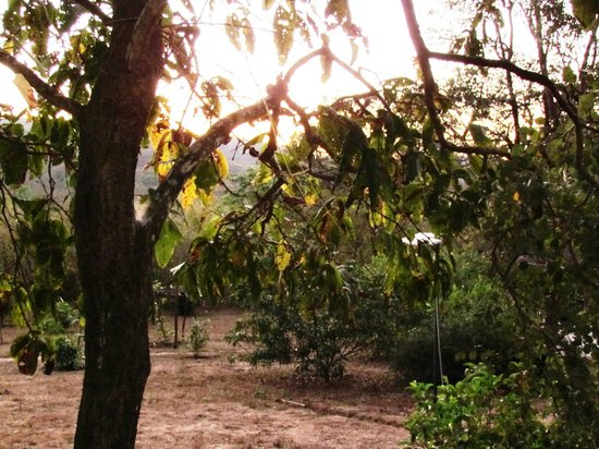 The Hermitage Guesthouse : Sun Set