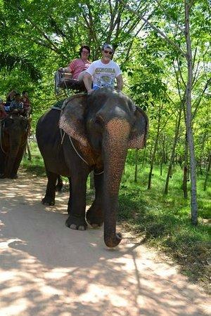 Khao Lak Land Discovery - Day Tours: Big Elephant