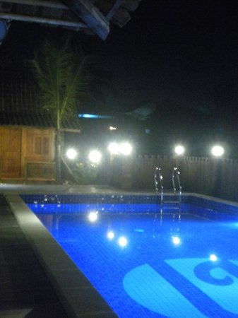 The Amrta Guest House : New swimming pool
