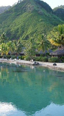 InterContinental Moorea Resort & Spa: bliss