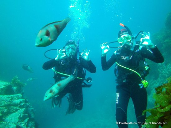 Dive North : Sarah and Caroline on their PADI Open Water Course