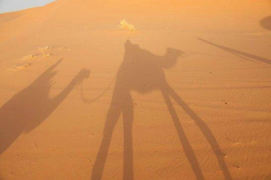 Easy Take Transport: citcuit merzouga dunes