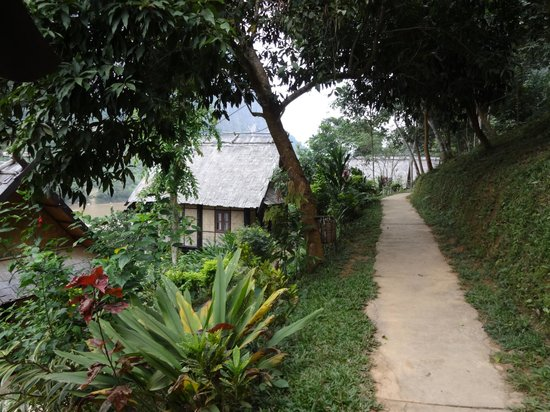 Nong Kiau River Side Rooms : Pathway to rooms