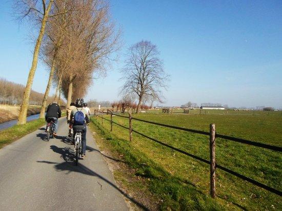 Quasimundo Bike Tours : Quasimundo bike tour