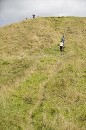 Mount Eden : One of the dirt paths to the peak