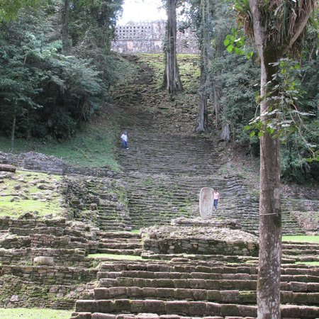 Yaxchilan: Looking up the steps to the highest structure