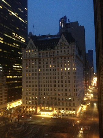 The Sherry-Netherland Hotel : view