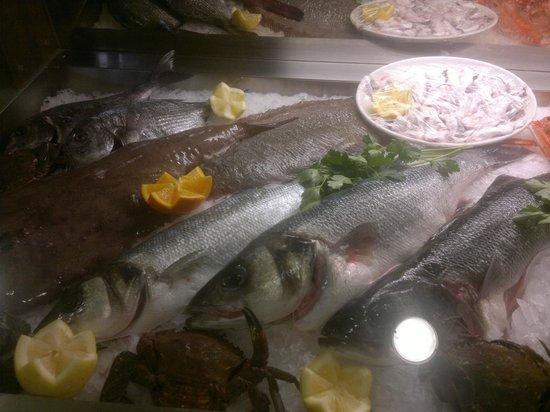 Mostrador pescados - Restaurante LA TUCHO (Santander)