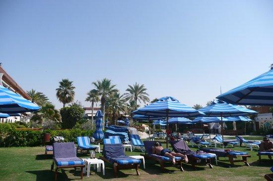 Dubai Marine Beach Resort and Spa : The pool/beach area