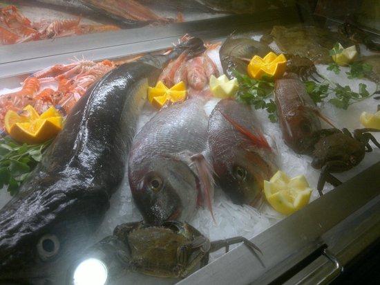 Mostrador de pescado - Restaurante LA TUCHO (Santander)