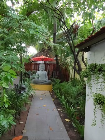 The Pavilion: Path leading to hotel