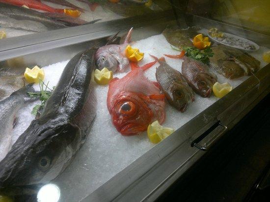 Mostrador pescado - Restaurante LA TUCHO (Santander)