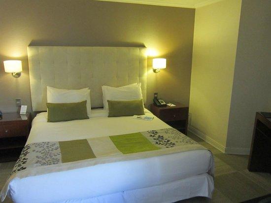 Plaza El Bosque San Sebastian: Suite 93