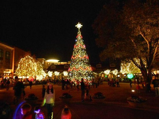Tommy Bahama's Restaurant & Bar: View from patio at Christmas