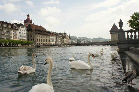 Old Town Lucerne : Вид на город