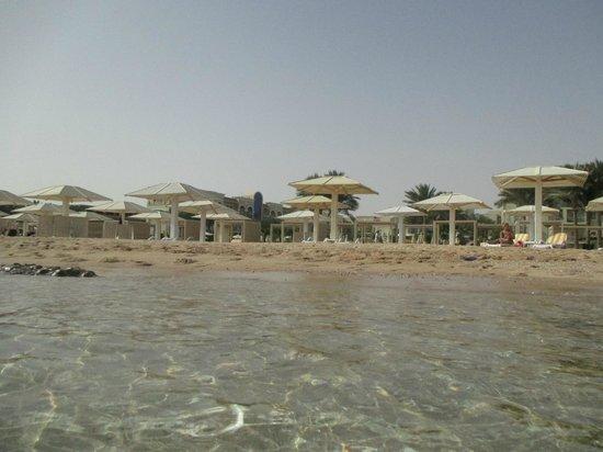 Strand Picture Of Premier Le Reve Hotel Spa Hurghada Tripadvisor