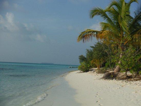 Fun Island Resort: spiaggia
