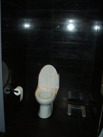 Andaz Wall Street: Toilet