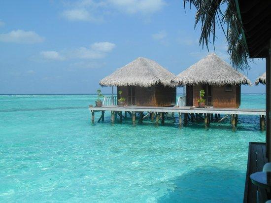 Meeru Island Resort & Spa: le spa