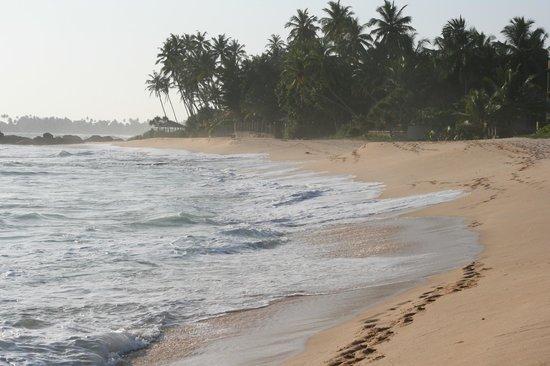 EKA Beach : Beach by Eka