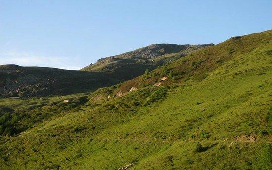 Alpage de Mase Gite la Louère