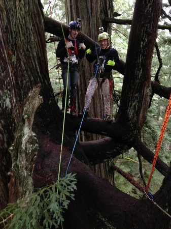 Redwoods River Resort & Campground: Happy campers