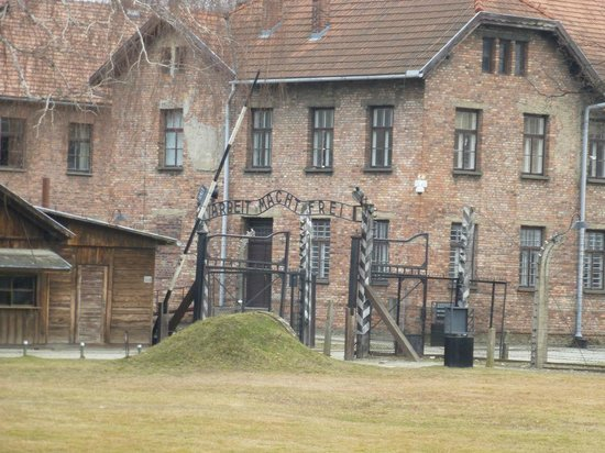 Cracow City Tours: Auschwitz 2