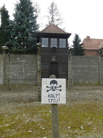 Cracow City Tours: Auschwitz 1