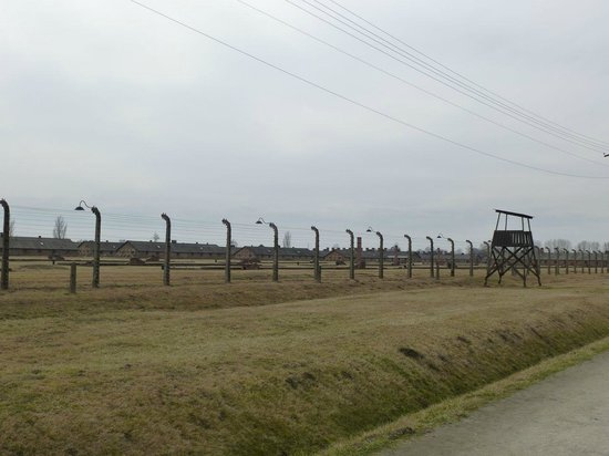 Cracow City Tours: Birkenau 2 a view of the women's camp