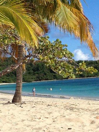 Casa de Kathy: walk to beaches