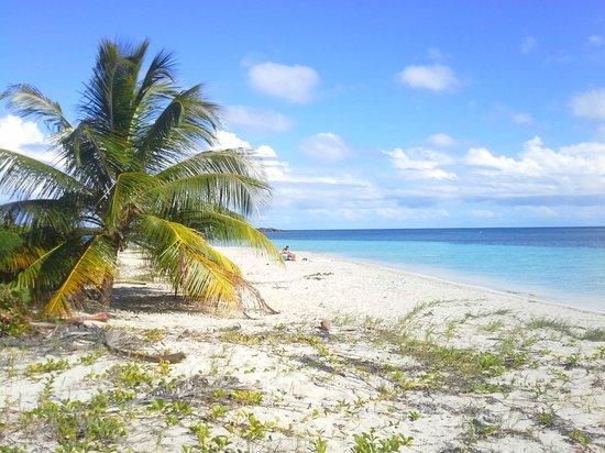 Casa de Kathy: beaches of Vieques