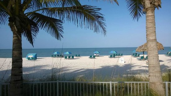 The Naples Beach Hotel & Golf Club: la spiaggia del resort