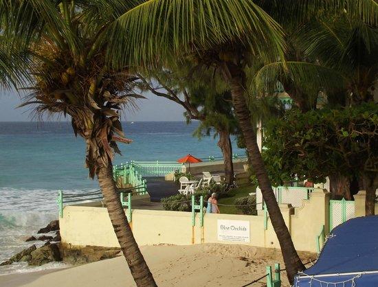 Coral Mist Beach Hotel: l'hotel gemello