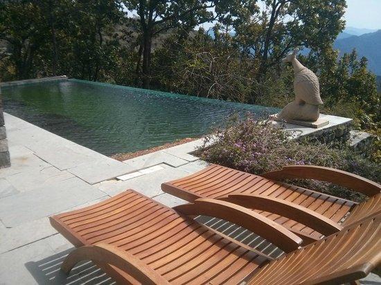 Ananda in the Himalayas: Pool at private villa # 2