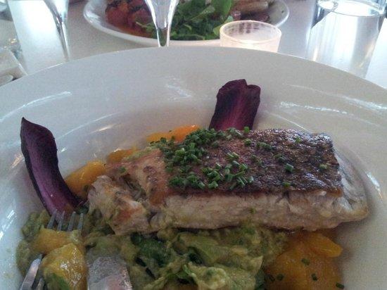 Fish Cafe: Main