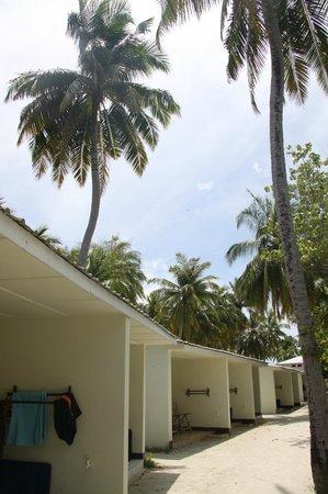 Fun Island Resort: домики