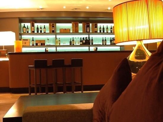 Starhotels Michelangelo: bar